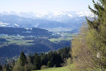 Sulzberg2